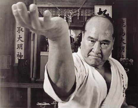b 806 - Сильнейшее каратэ от школы Масутацу Оямы