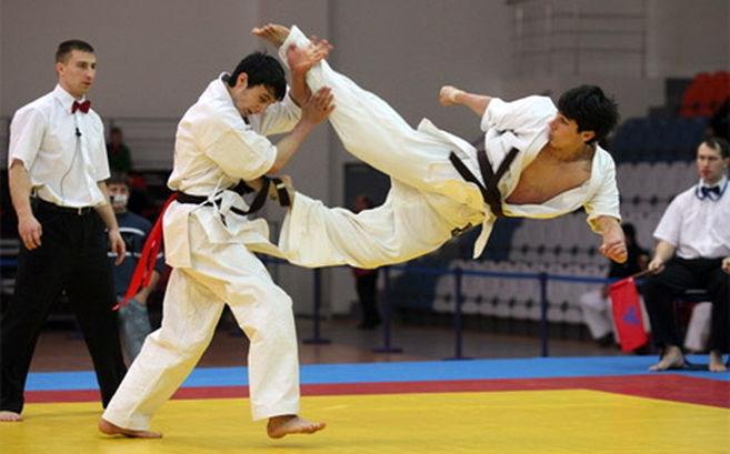 b 813 - Каратэ Кёкусинкай как японское боевое искусство