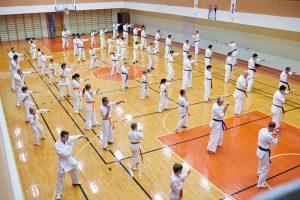007 photo 7487 1 300x200 - Международный семинар по каратэ Кекусинкай